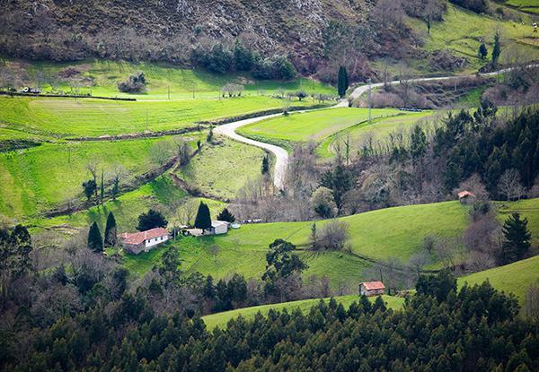 Senderos Lagos de Covadonga